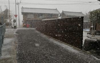 トンネルの向こうが雪でびっくりしたら、手前も・・・