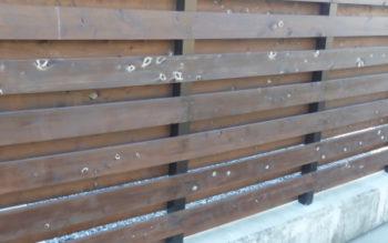 桧の防腐加工材が斑点になっちゃいました